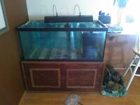 95 gallon fish tank with stand and all accessories