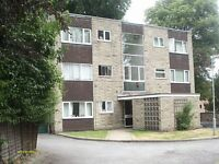 Spacious studio flat to rent S10, with parking excellent location for Sheffield University