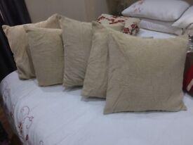 5 Chenille cream cushions