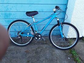 Unisex push bike