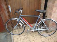Dawes Bicycle (Hand Built)