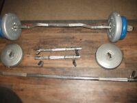 Job-Lot weight lifting bars & weights