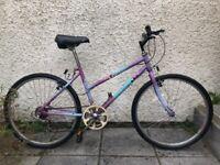 Raleigh Cassis Ladies Bike