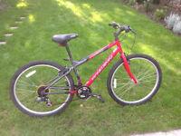 Schwinn Frontier Boys Mountain Bike