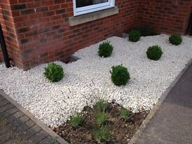 20mm cotswold cream chipping