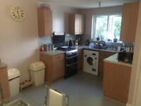 3 bed house with garden sw16 2ub