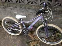 Girls Mountain Bike - £35