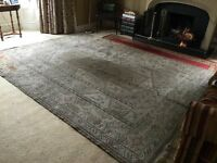 Large living/dining room rug