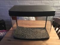 URGENT! Cold water Fish tank excellent condition
