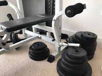 Home Gym Equipment With Dumbbells, Bar, Weights and Mats