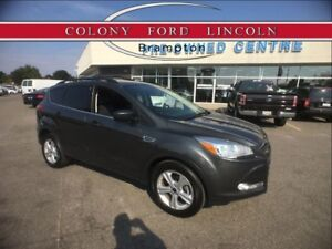 2015 Ford Escape FORD CERT, SPECIAL 1.9% FINANCE UP TO 72MO's!