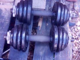 dumbbells 2 x 12.5 kg