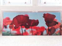 Coquelicot painting