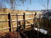 Professional landscape and fencing