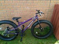 "big fatty coyote fatman bike 17"" frame, excellent condition"