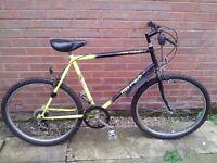 Free Spirit Bike
