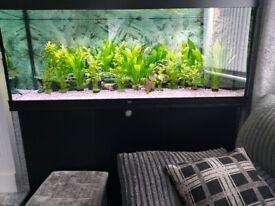 Juwel 450 aquarium cabinet