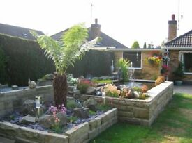 Yorkstone pieces for garden wall