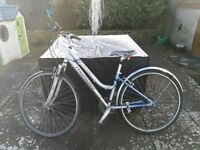 Women's Hybrid/Commuter Bike by Claude Butler, Recently Serviced, Including New Lights and ABUS Lock