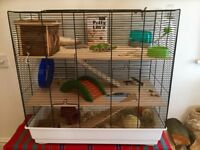 Large Hamster Cage with many Accessories