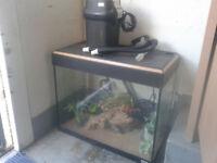 fluval roma 90 fish tank