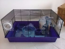 purple hamster , guinea pig or small rabbit cage