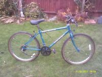 RALEIGH SAVANNA MOUNTAIN BIKE ONE OF MANY QUALITY BICYCLES FOR SALE