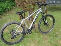 GENTS BICYCLE