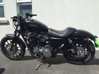 2014 - Harley Davidson 883 N Iron - LOW MILES -SOLD