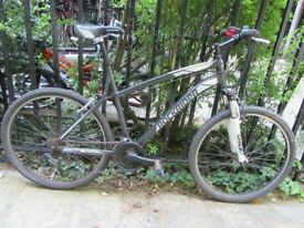 Bicycle (adult; mountainbike; good shape)