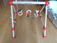 Wooden Baby Gym and Playmat