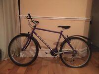 Purple Saracens Bike