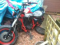 125 project bike ideal for young easyrider