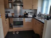 2 bed 1st floor Appartment Exchange for 1/2 bed bungalow Earlsdon / Coundon or surrounding areas