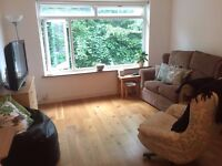 Double room in Wimbledon (with parking) to rent