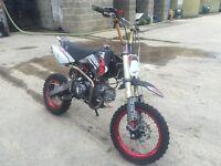 Pit bike 140cc DYX demon stomp wpb