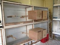 Budgie double breeding/stock cages for sale