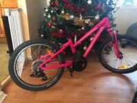 Pink specialized bike