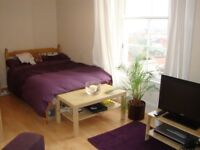 A Lovely clean, quiet and safe studio apartment in superb Clifton location