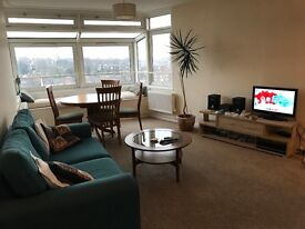 Beautiful spacious double bedroom flat in Herne Hill / views of London