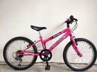 """FREE Lights with (2547) 20"""" 11"""" RALEIGH GIRLS MOUNTAIN HYBRID BIKE BICYCLE Age:6-9 Height: 120-135cm"""