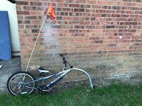 Trek trailer bike with gears