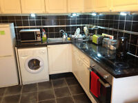 Sunny Furnished One Bedroom Flat