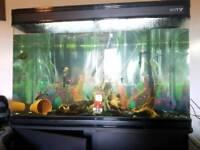 3ft boyu fish tank