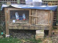 Rabbit hutch free - handmade