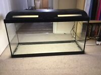 100 later fish tank. Good condition with T5 light and lid.