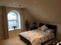 Luxurious Room/Studio in Poole close to town and hospital