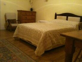 Spacious double room in large house on edge of Haldon Forest, with shared bathroom / kitchen