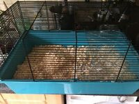 Almost new hamster cage