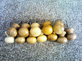 12 wooden knobs
